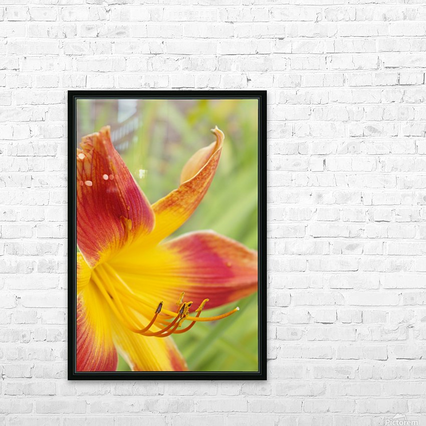 Peach Lilly HD Sublimation Metal print with Decorating Float Frame (BOX)