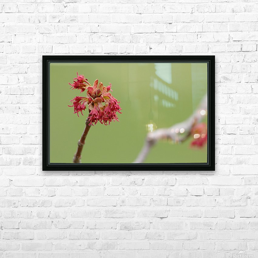 Blooming 2 HD Sublimation Metal print with Decorating Float Frame (BOX)