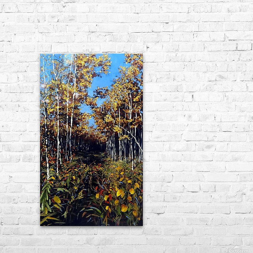 Fall Trail Fishcreek Park HD Sublimation Metal print with Decorating Float Frame (BOX)