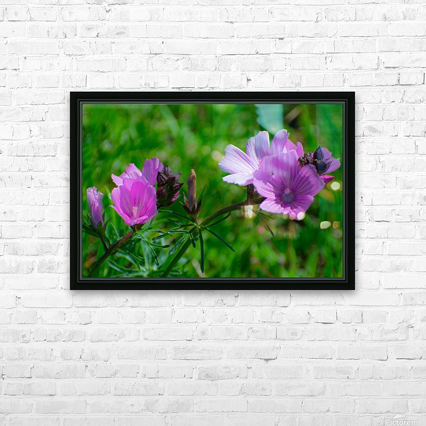 20190330 DSC_0561 HD Sublimation Metal print with Decorating Float Frame (BOX)