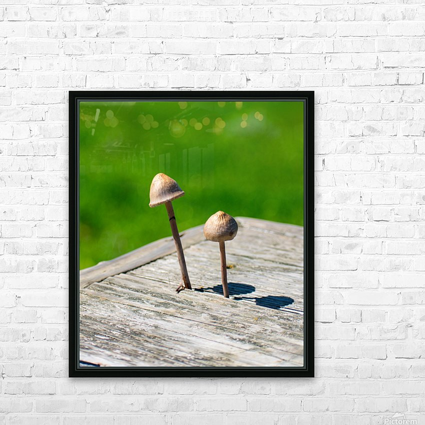 20190330 DSC_0495 HD Sublimation Metal print with Decorating Float Frame (BOX)