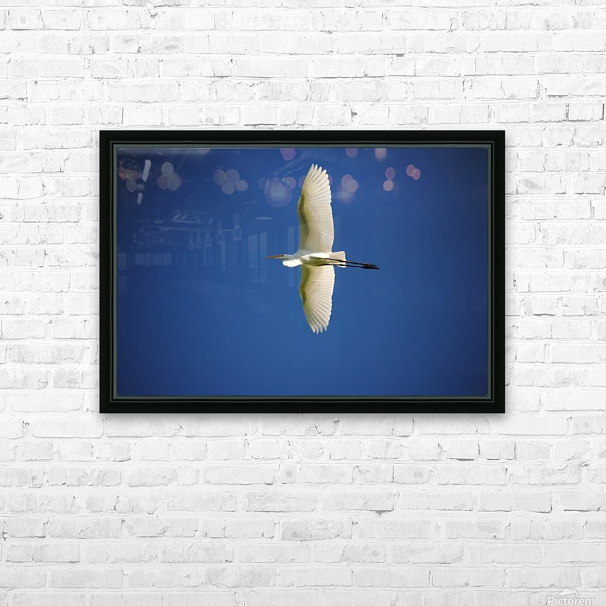 Egret Sailing Above HD Sublimation Metal print with Decorating Float Frame (BOX)