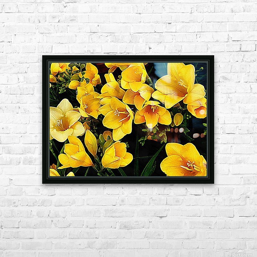 Yellow Freesias HD Sublimation Metal print with Decorating Float Frame (BOX)