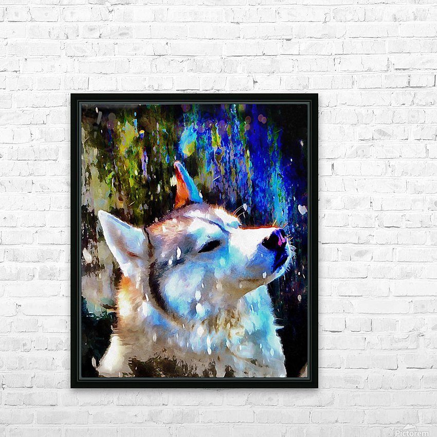 Husky Enjoying the Snow HD Sublimation Metal print with Decorating Float Frame (BOX)