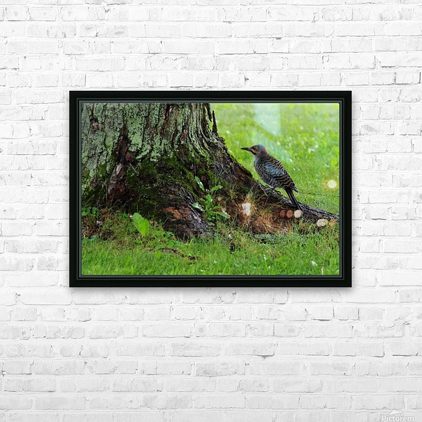 Pic flamboyant  HD Sublimation Metal print with Decorating Float Frame (BOX)