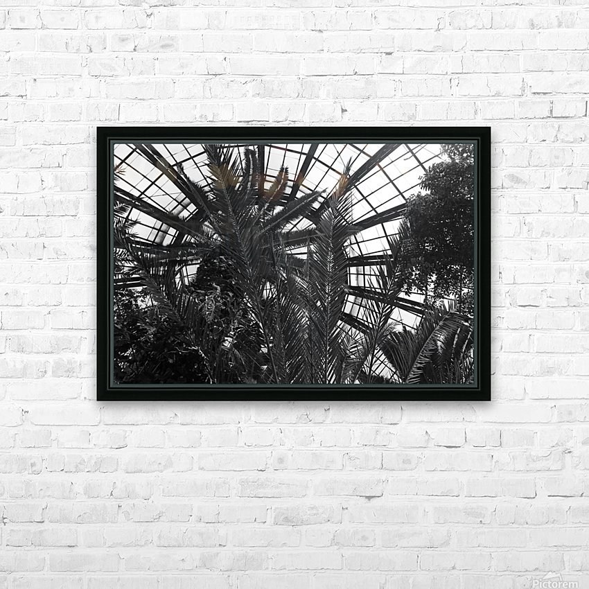 Bell Isle Conservatory Dome 1 BW HD Sublimation Metal print with Decorating Float Frame (BOX)