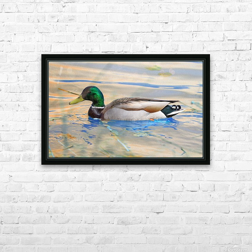Canard Colvert HD Sublimation Metal print with Decorating Float Frame (BOX)