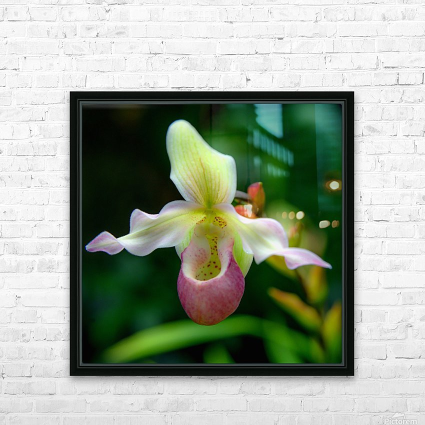 Orchidée HD Sublimation Metal print with Decorating Float Frame (BOX)