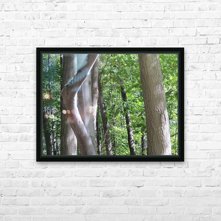 Landscape (266) HD Sublimation Metal print with Decorating Float Frame (BOX)