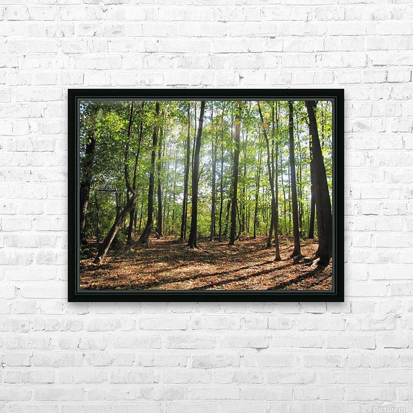 Landscape (37) HD Sublimation Metal print with Decorating Float Frame (BOX)