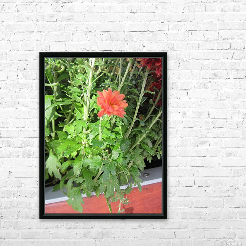 Flowers (55) HD Sublimation Metal print with Decorating Float Frame (BOX)