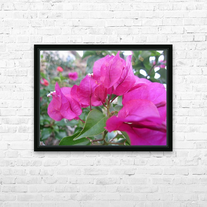 Flowers (47) HD Sublimation Metal print with Decorating Float Frame (BOX)