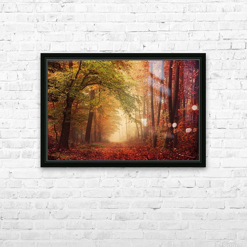 Colorful autumn forest HD Sublimation Metal print with Decorating Float Frame (BOX)