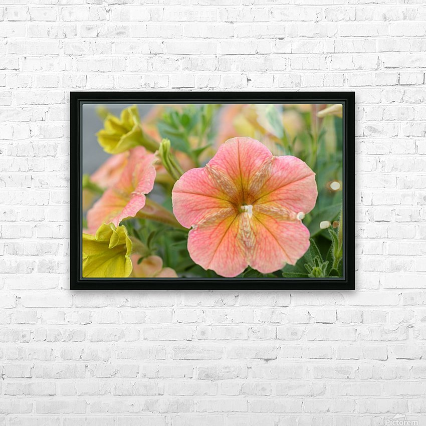 Orange Flowers Photograph HD Sublimation Metal print with Decorating Float Frame (BOX)