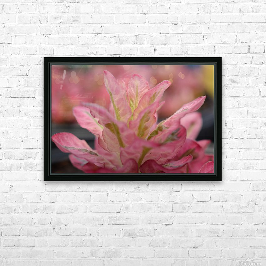 Pink Flower Photograph HD Sublimation Metal print with Decorating Float Frame (BOX)