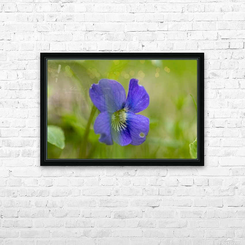 Wild Violet HD Sublimation Metal print with Decorating Float Frame (BOX)