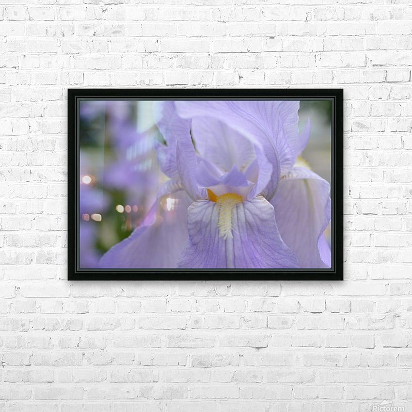 Pale Blue Iris Photograph HD Sublimation Metal print with Decorating Float Frame (BOX)