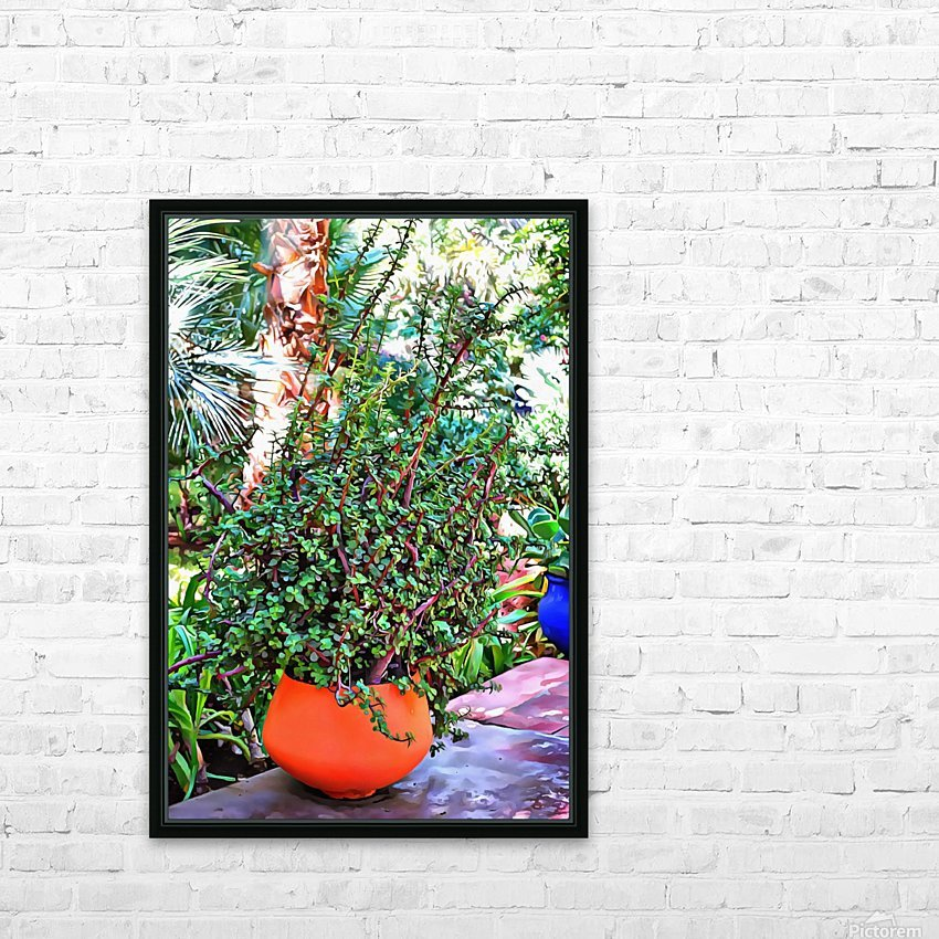 Colorful Plant Pots Marrakesh 10 HD Sublimation Metal print with Decorating Float Frame (BOX)