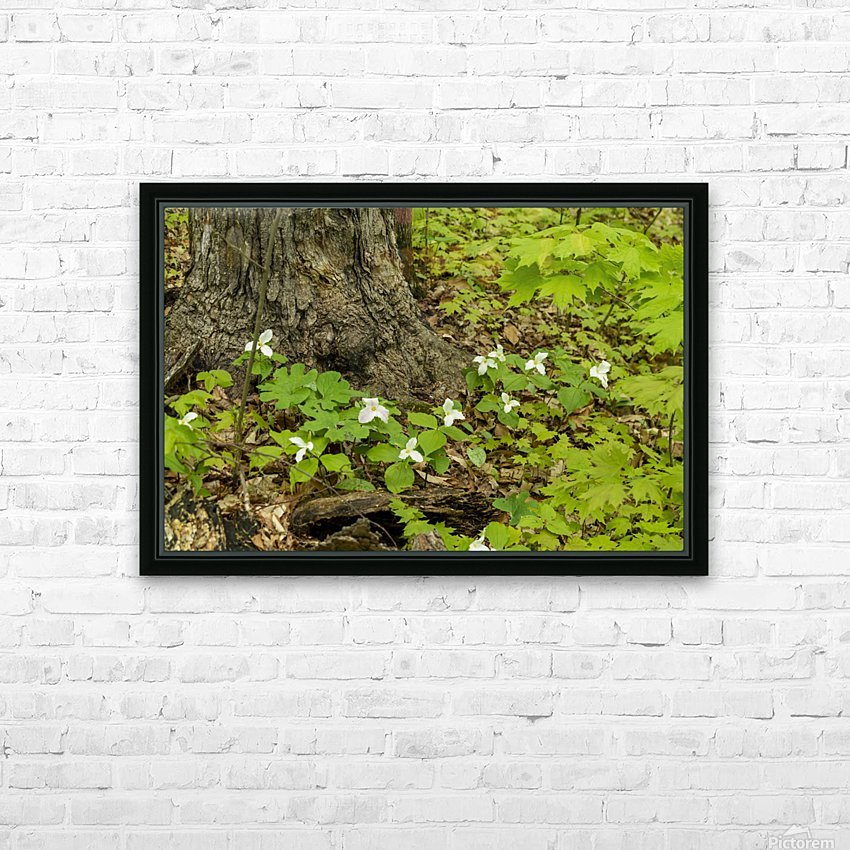 Trillium Woods 10 HD Sublimation Metal print with Decorating Float Frame (BOX)