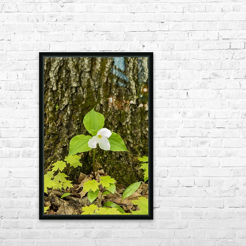 Trillium Woods 12 HD Sublimation Metal print with Decorating Float Frame (BOX)