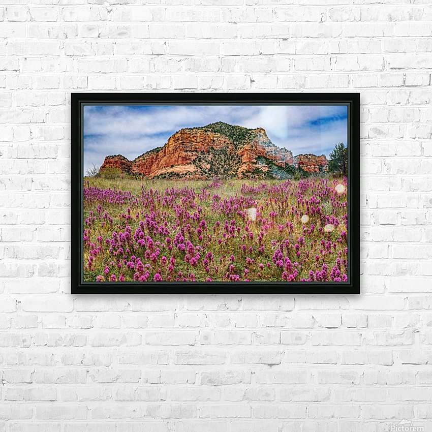 Clover Fields in Sedona HD Sublimation Metal print with Decorating Float Frame (BOX)