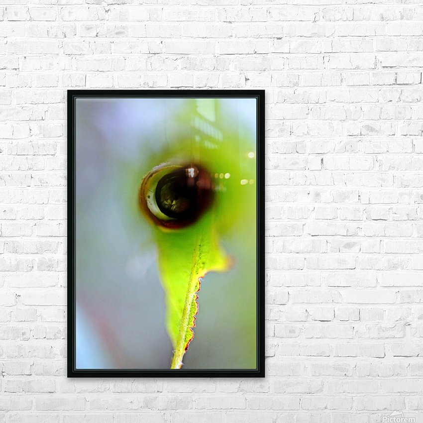 Curled Leaf 03 HD Sublimation Metal print with Decorating Float Frame (BOX)