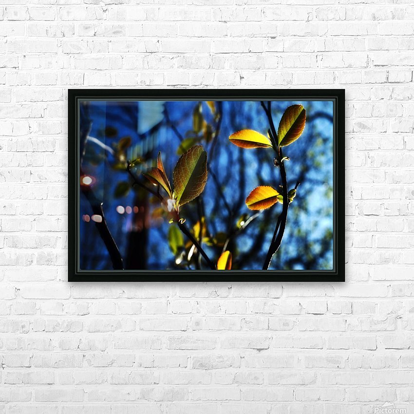 Pop Color Summer Flowers HD Sublimation Metal print with Decorating Float Frame (BOX)