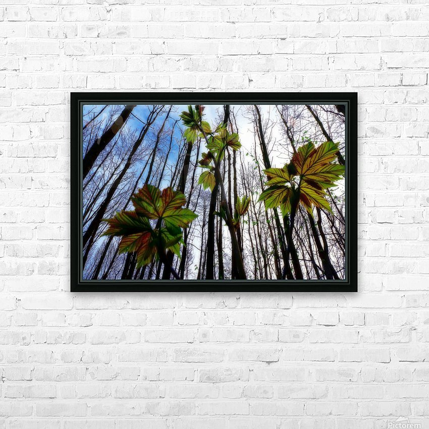 Green and Colourful Nature Scene HD Sublimation Metal print with Decorating Float Frame (BOX)