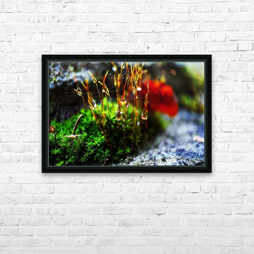 Macro Raindrop Photography Art 13 HD Sublimation Metal print with Decorating Float Frame (BOX)