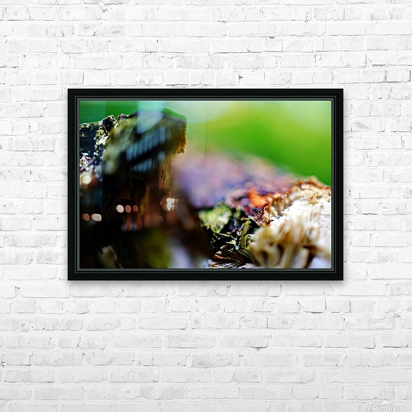 Abstract Macro Nature Photography 08 HD Sublimation Metal print with Decorating Float Frame (BOX)