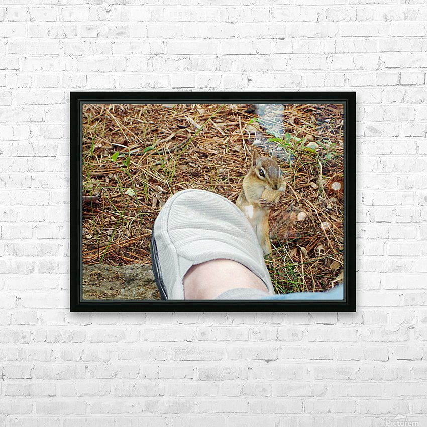 Wally The Chipmunk  - Eats  A Peanut Off My Slipper HD Sublimation Metal print with Decorating Float Frame (BOX)