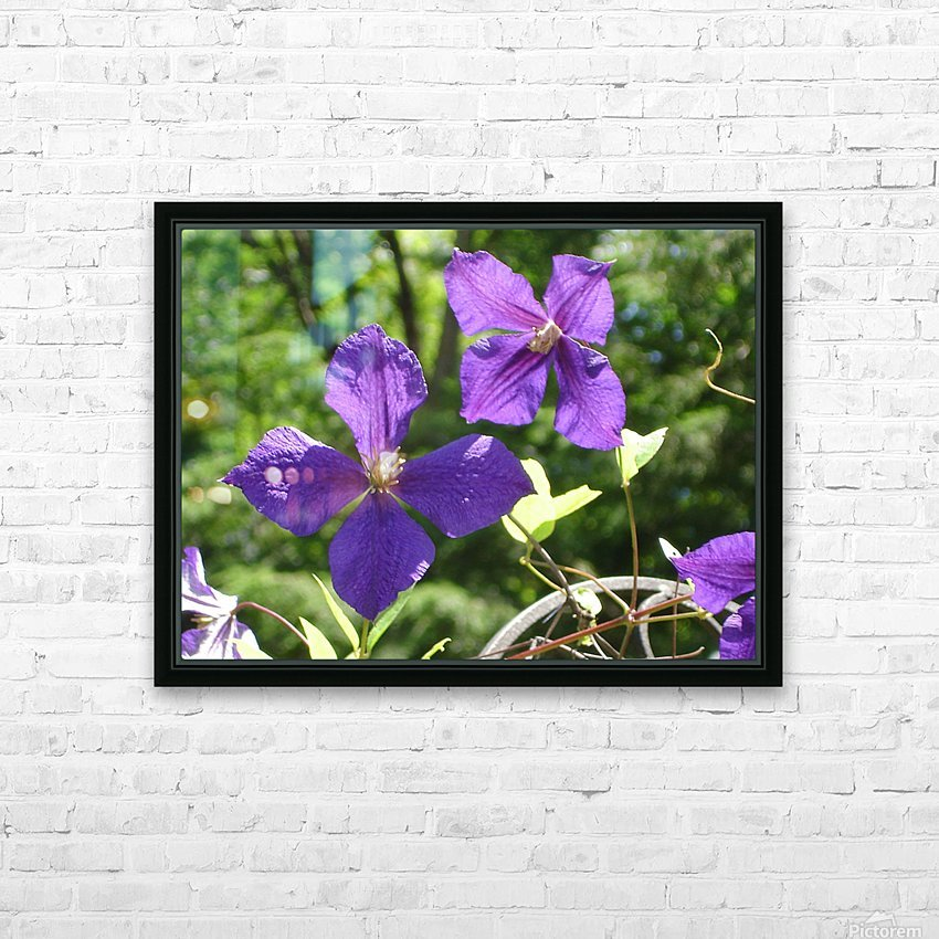 Flower Study -9 HD Sublimation Metal print with Decorating Float Frame (BOX)