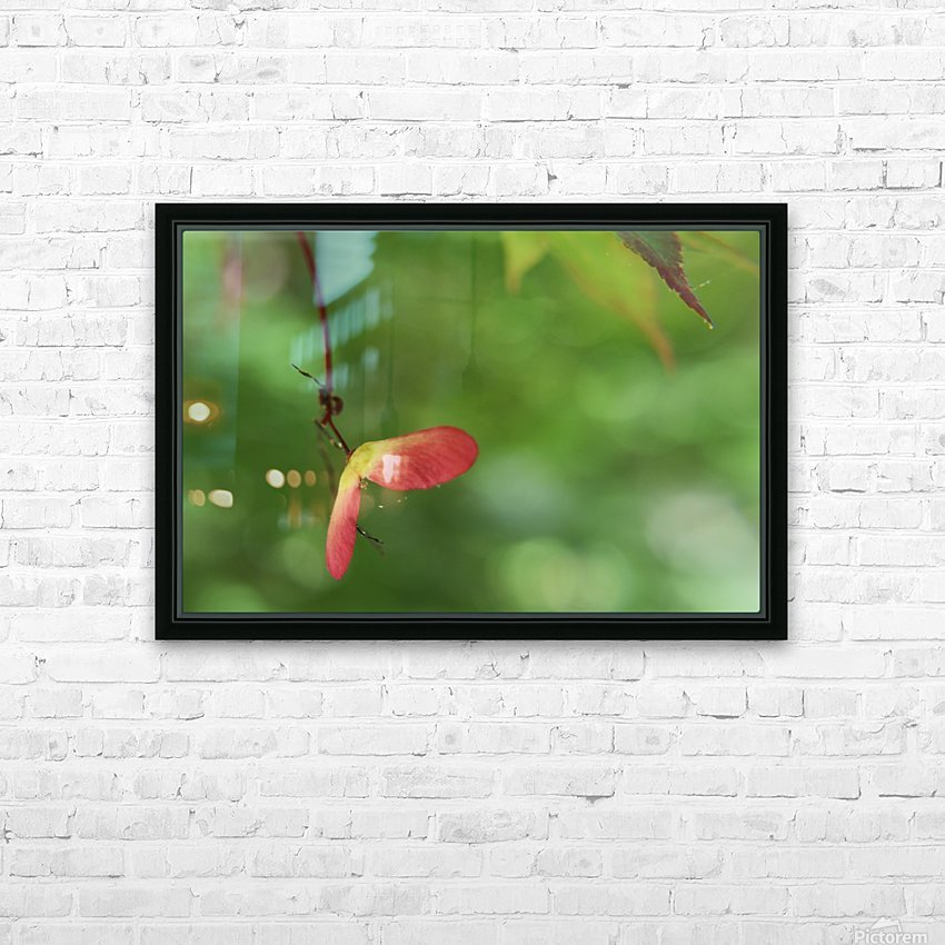 Japanese Maple Seed HD Sublimation Metal print with Decorating Float Frame (BOX)