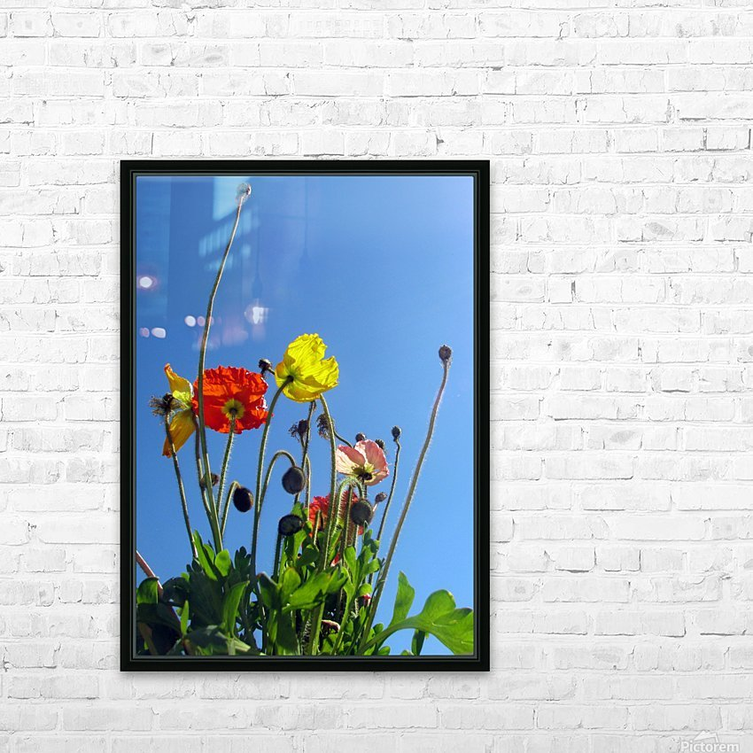 Spring Sky Garden HD Sublimation Metal print with Decorating Float Frame (BOX)