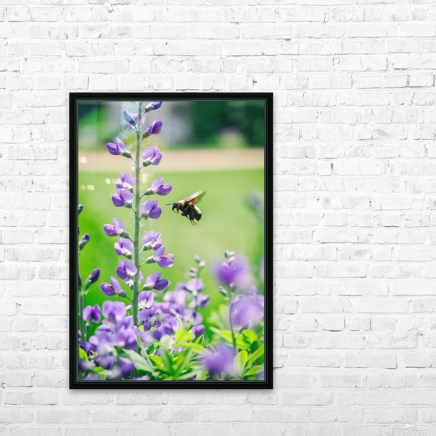 Bee In Flight HD Sublimation Metal print with Decorating Float Frame (BOX)