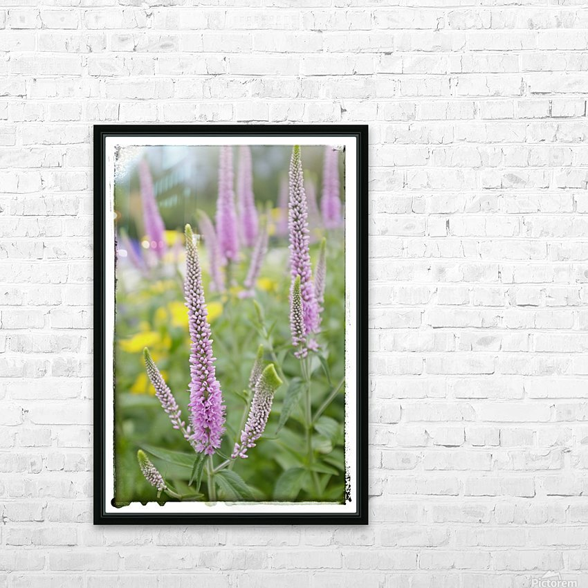 Cone Flowers HD Sublimation Metal print with Decorating Float Frame (BOX)