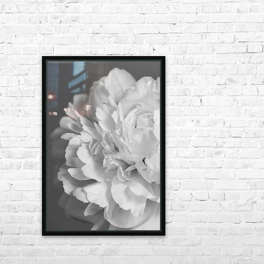 Peony in Black & White HD Sublimation Metal print with Decorating Float Frame (BOX)