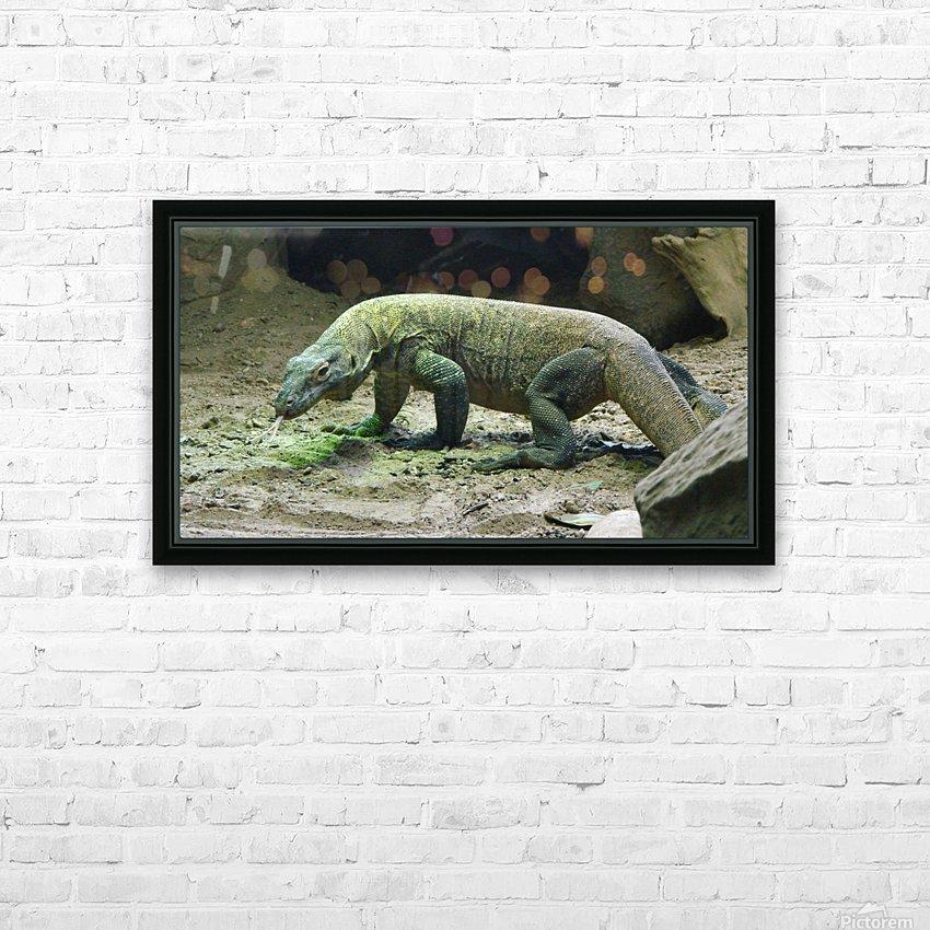 komodo dragon komodo lizard reptile HD Sublimation Metal print with Decorating Float Frame (BOX)
