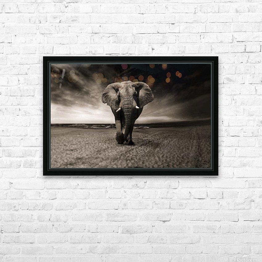 elephant animal africa safari HD Sublimation Metal print with Decorating Float Frame (BOX)