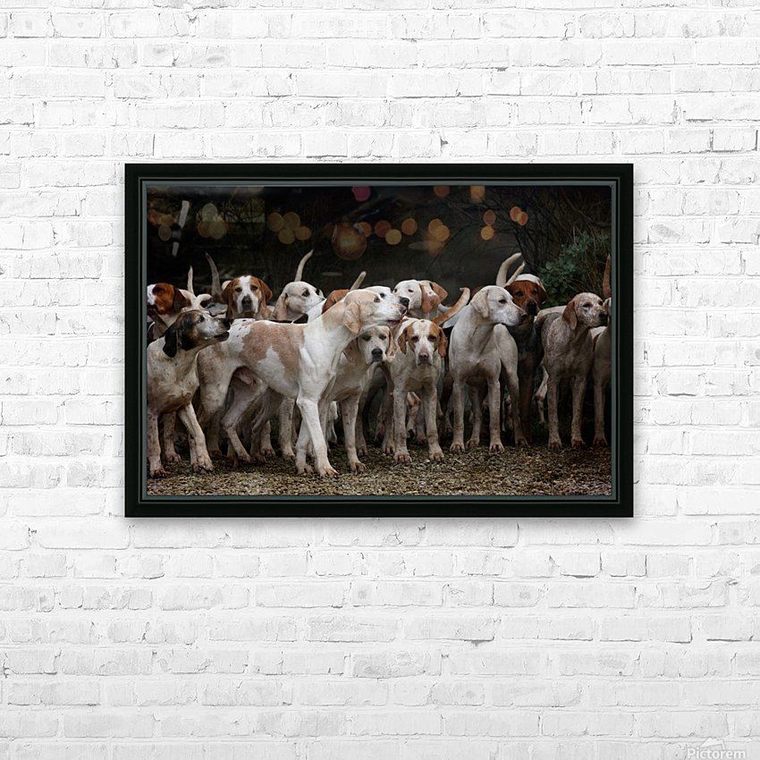 dog herd canine animal pet hounds HD Sublimation Metal print with Decorating Float Frame (BOX)