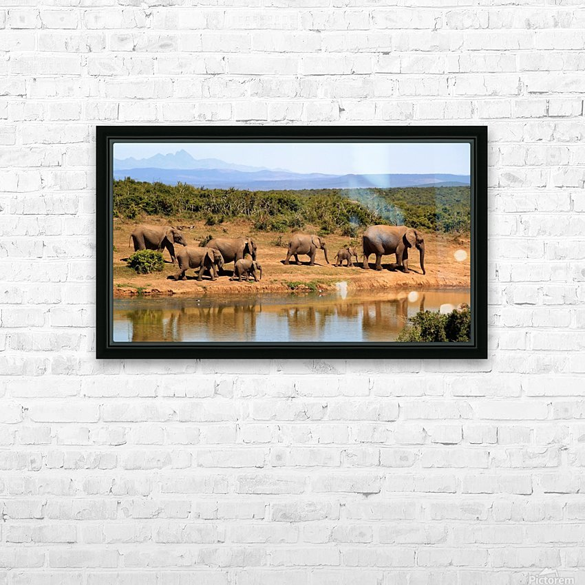 elephant herd of elephants HD Sublimation Metal print with Decorating Float Frame (BOX)