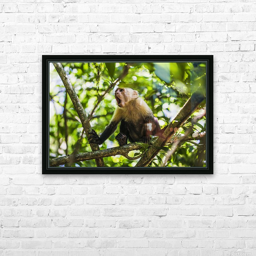 Monkey yawning in jungle HD Sublimation Metal print with Decorating Float Frame (BOX)