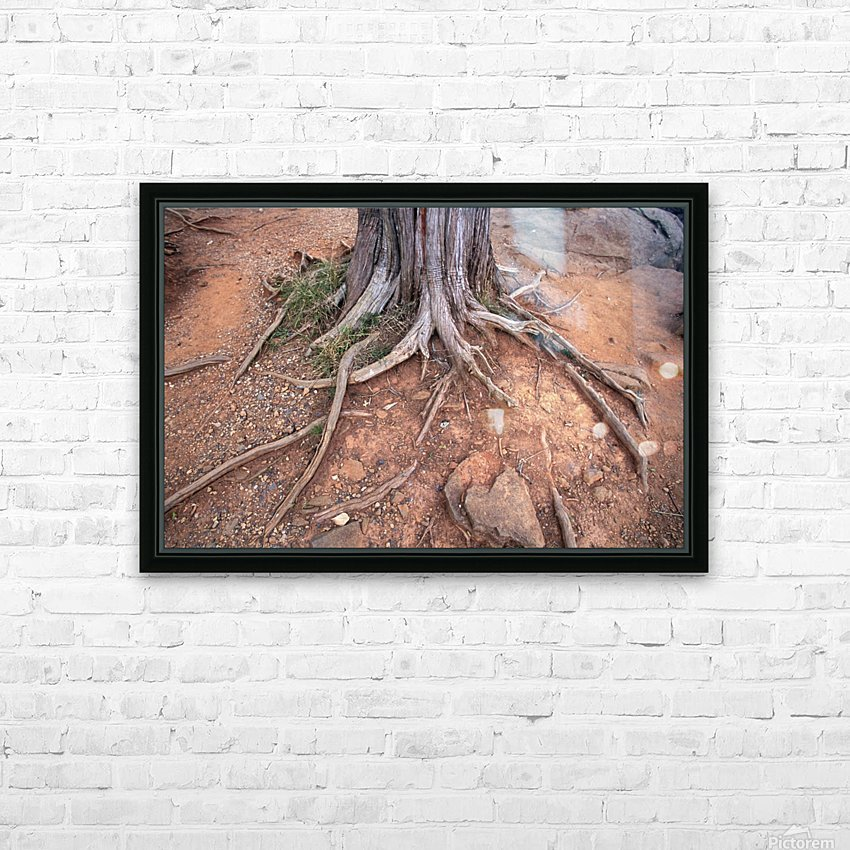 Gettysburg Tree Roots HD Sublimation Metal print with Decorating Float Frame (BOX)