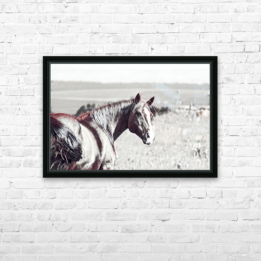 fields of freedom HD Sublimation Metal print with Decorating Float Frame (BOX)