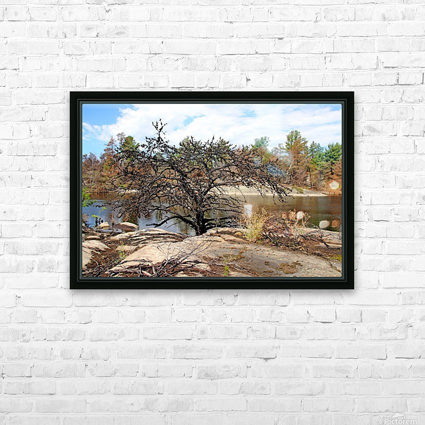 The Pine Tree I HD Sublimation Metal print with Decorating Float Frame (BOX)