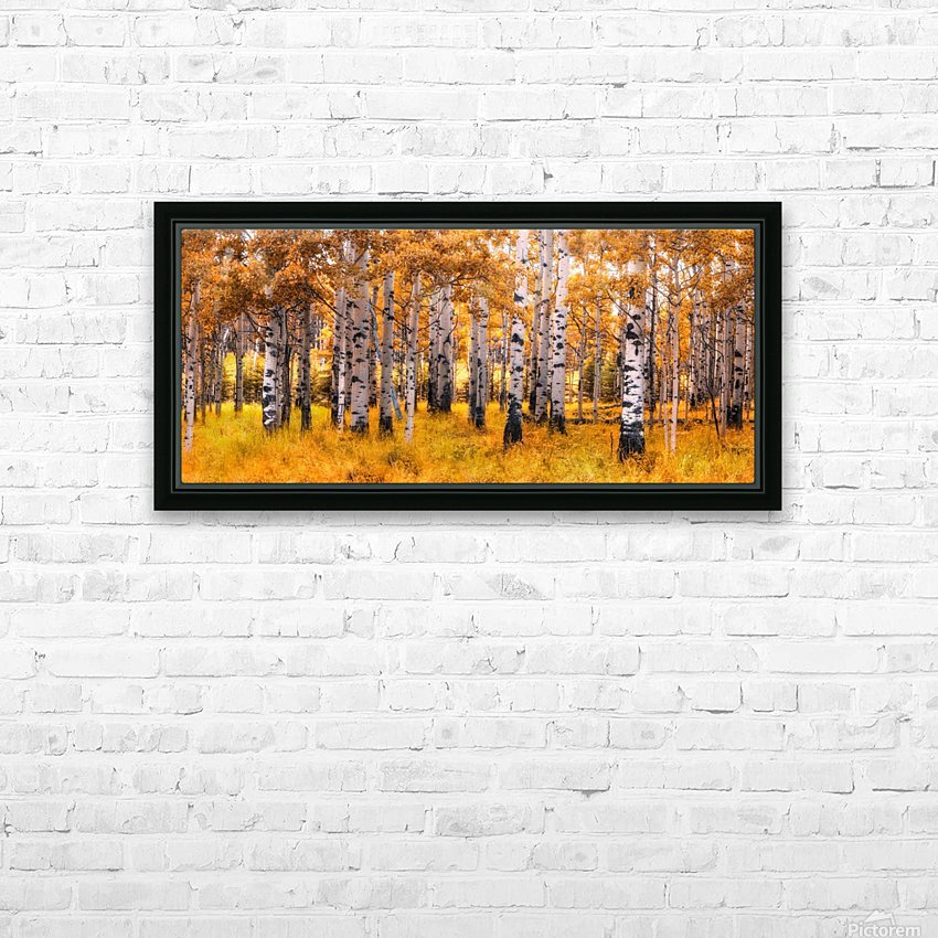 Birch Trees Autumn  HD Sublimation Metal print with Decorating Float Frame (BOX)