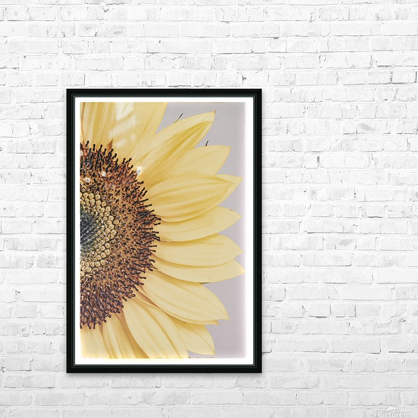 Sunflower  HD Sublimation Metal print with Decorating Float Frame (BOX)