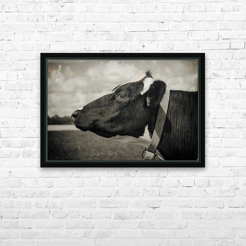 Portrait of a Cow HD Sublimation Metal print with Decorating Float Frame (BOX)