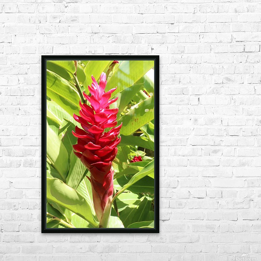 Carribean Beauty HD Sublimation Metal print with Decorating Float Frame (BOX)