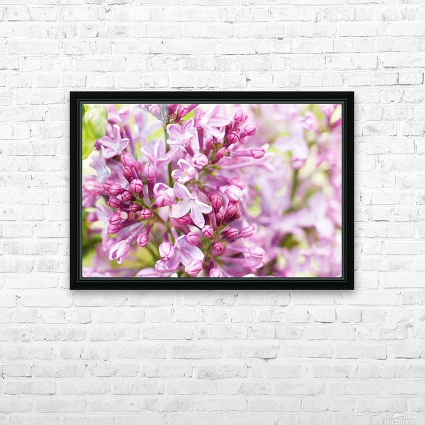 Lilacs HD Sublimation Metal print with Decorating Float Frame (BOX)